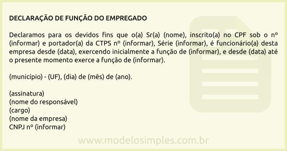 Modelo De Declaração De Função